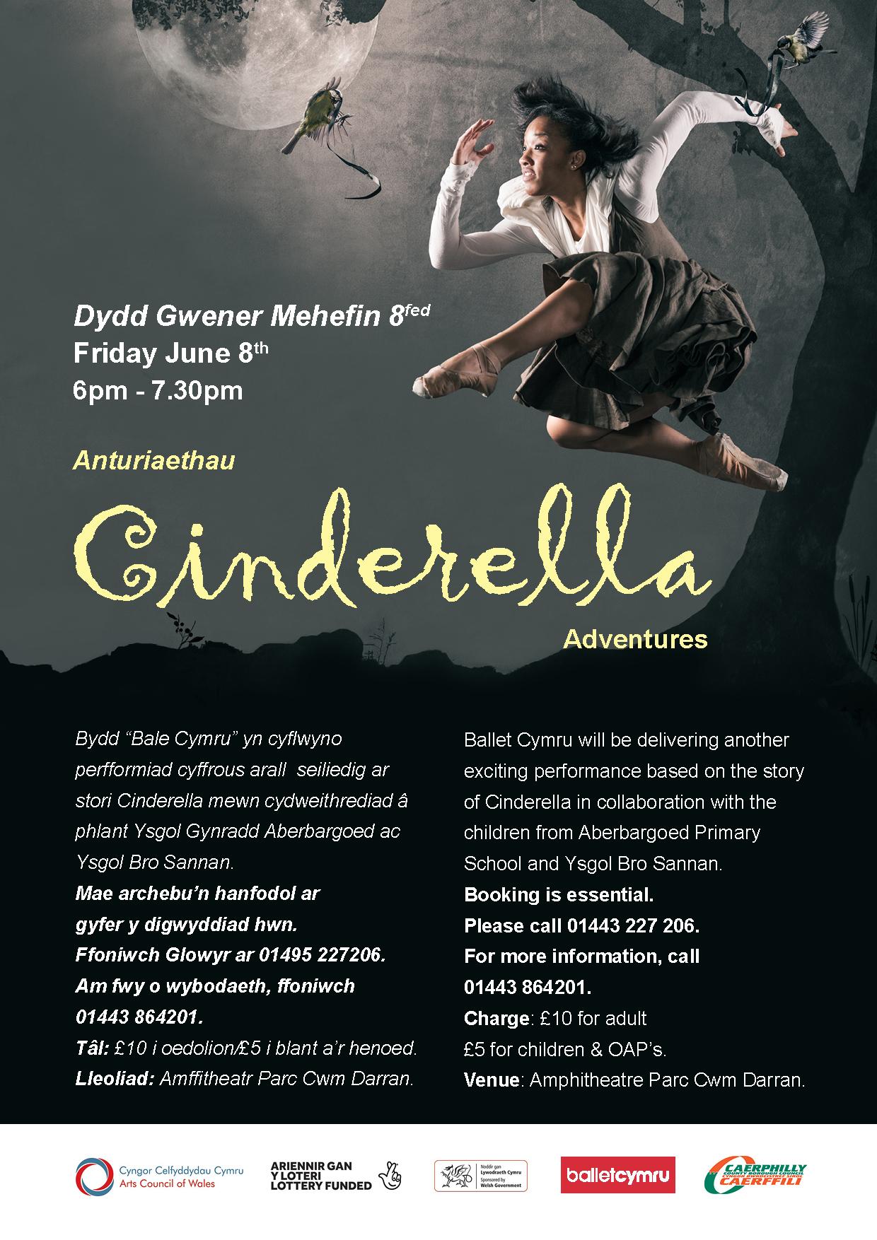 cinderalla A4 poster
