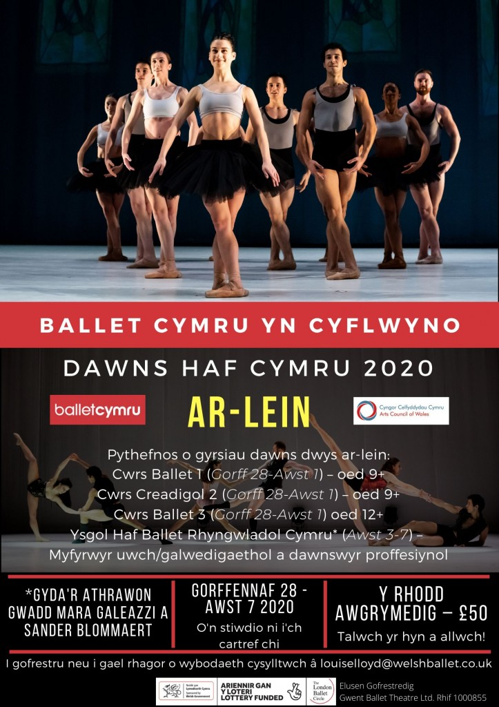 Welsh Poster WSD 2020